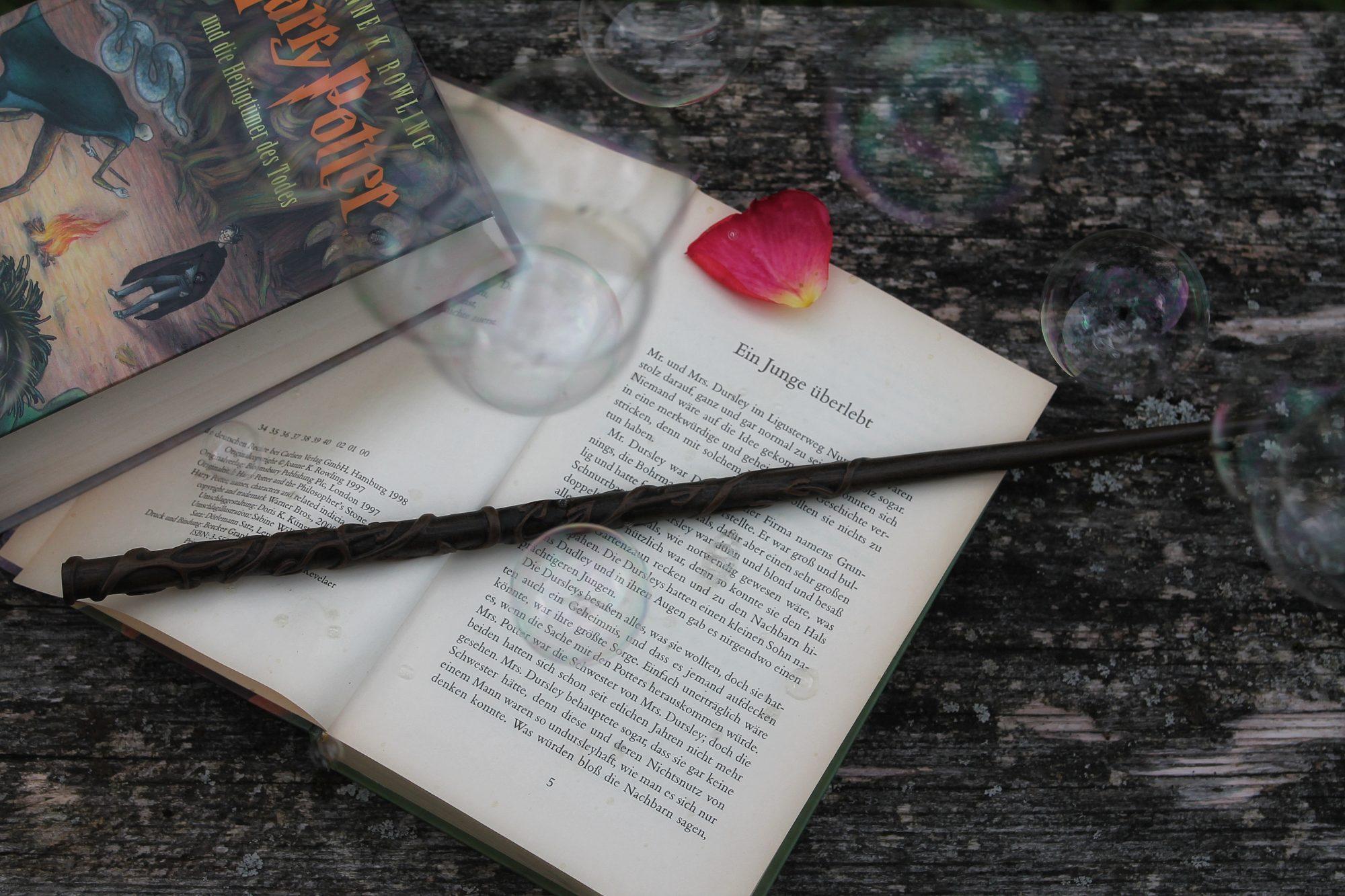 Herzenswelten Harry Potter Zauberstab