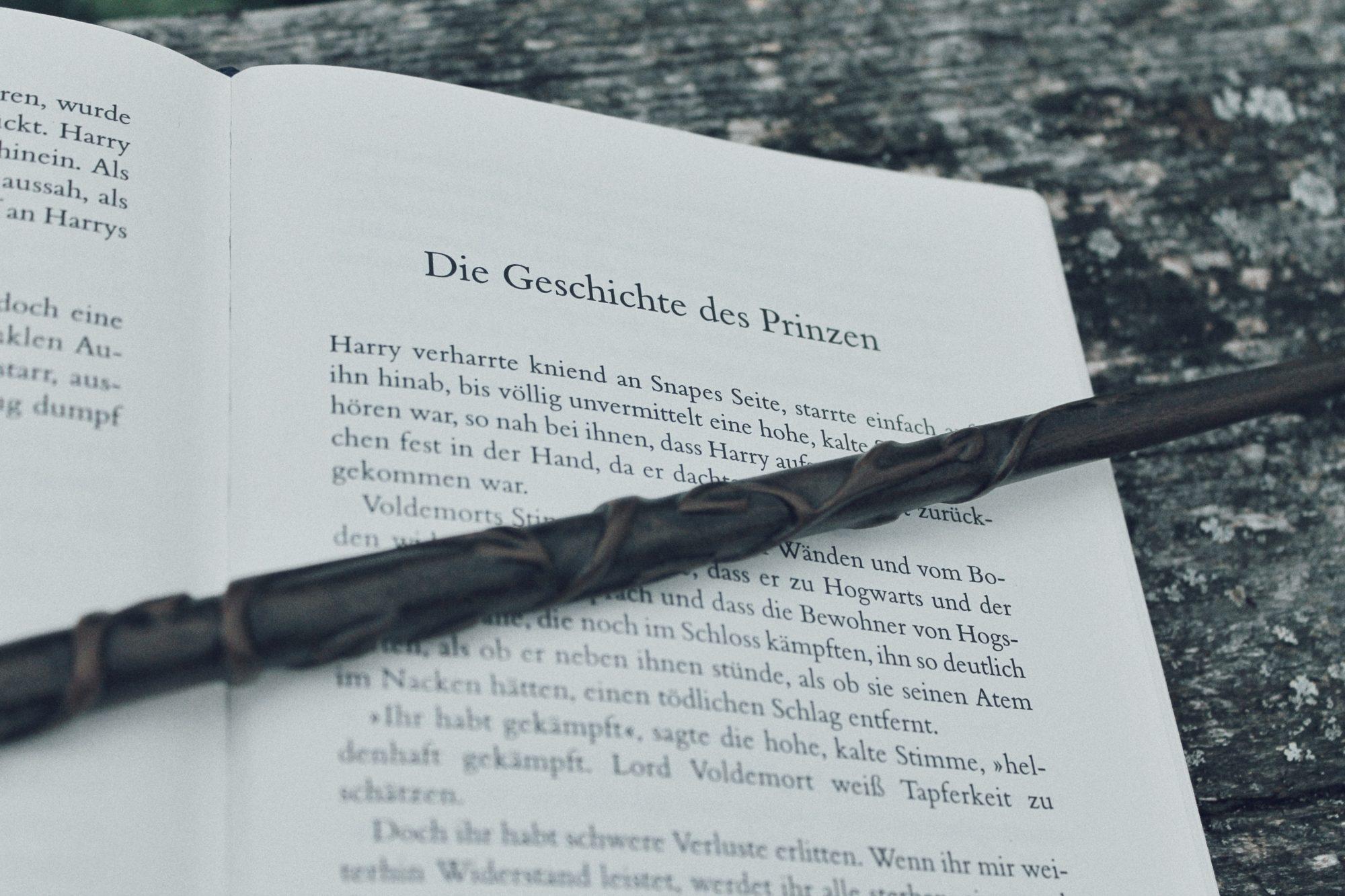 Herzenswelten Harry Potter Zauberstab nah