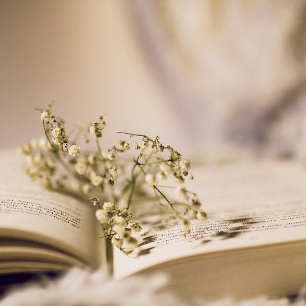 """Offenes Buch Fantasy und Eskapismus; Bild: """"Open book"""" von Magda K (https://www.flickr.com/photos/krecimag/, CC BY 2.0)"""
