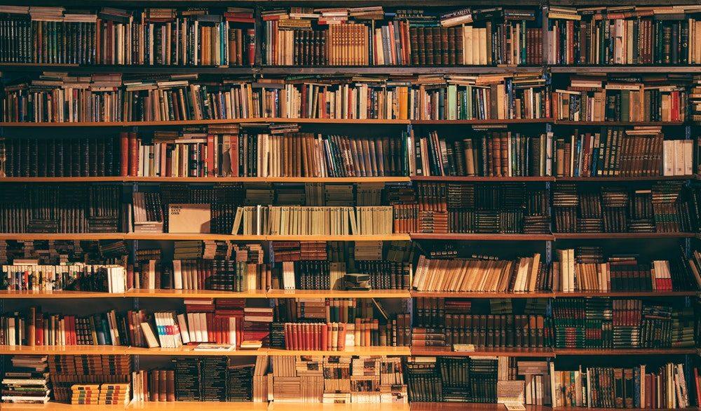Beschreib mir deine Realität und ich zeige dir deinen Realismus - Bücherregal Artikelbild